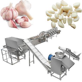 Automatic Garlic Cloves Peeling Processing Line