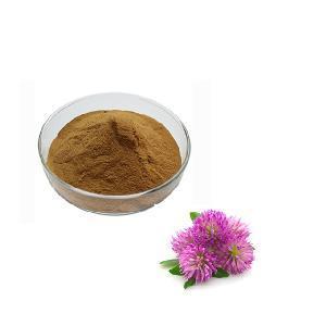 Red Clover Extract 99% Biochanin A