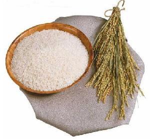 Delicious Rice protein vegan