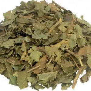 Cha de Bugre Tea