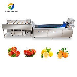 Large fruit and vegetable brush washing cleaning production line customization