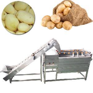 Potato and Sweet Potato Brush Roller Washing And Peeling Machine