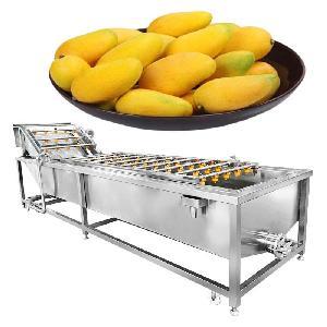 Automatic Fruit And Vegetable Washing Machine Mango Washing Cleaning Machine
