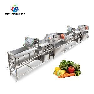 Double Vortex Bubble Vegetable Fruit Washing Machine Production Line