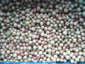 IQF Frozen Gooseberry