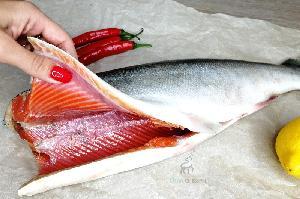 Wild-Caught Frozen Salmon Fish