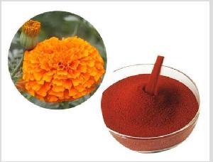 Micro-encapsulated Lutein Ester Powder