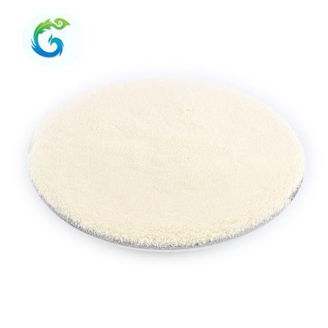 Hydrolyzed Bovine Collagen / Collagen Protein Powder