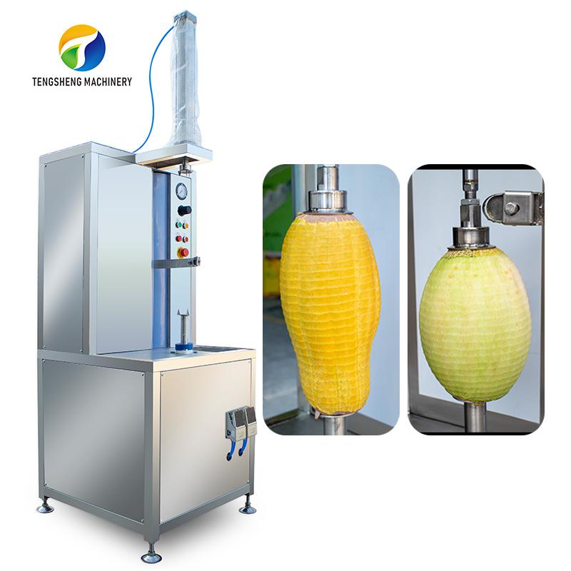 Industrial Vertical Watermelon Fruit Peeler Food Processing Machinery (TS-P30)