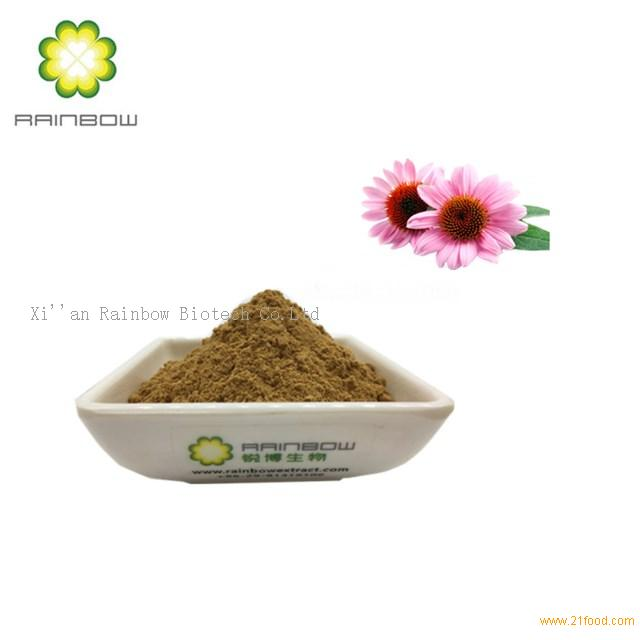 Echinacea purpurea extract chicoric acid 1%-4%