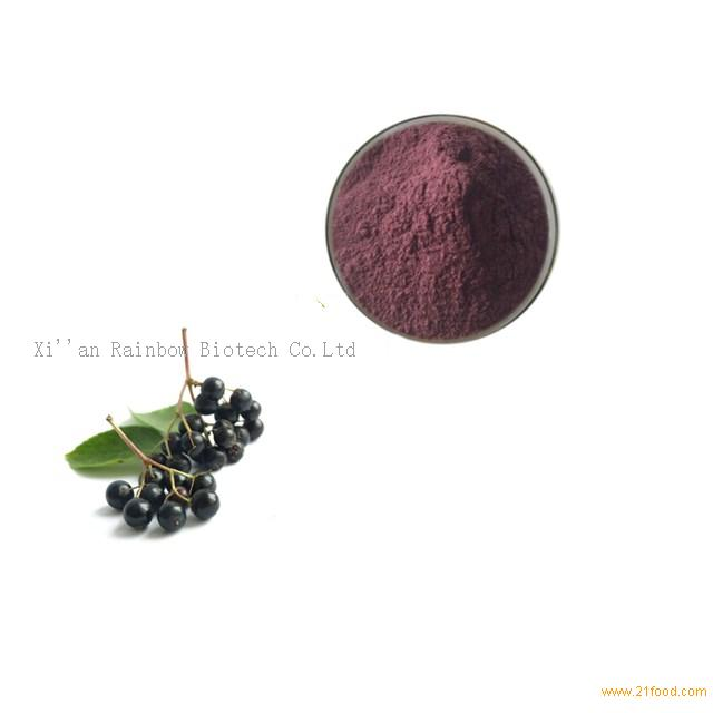 Elderberry extract Anthocyanidins 25% for strong immunity systerm