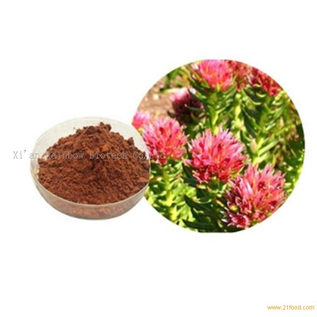 Natural rhodiola rosea root extract powder