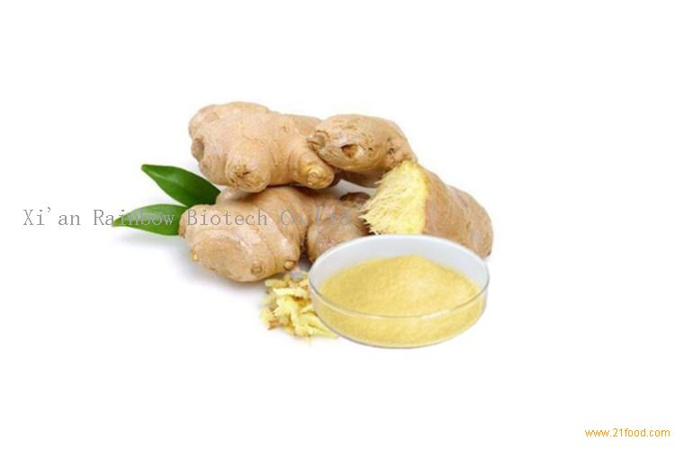 Water Soluble 1% Gingerol Powder Ginger Root Extract