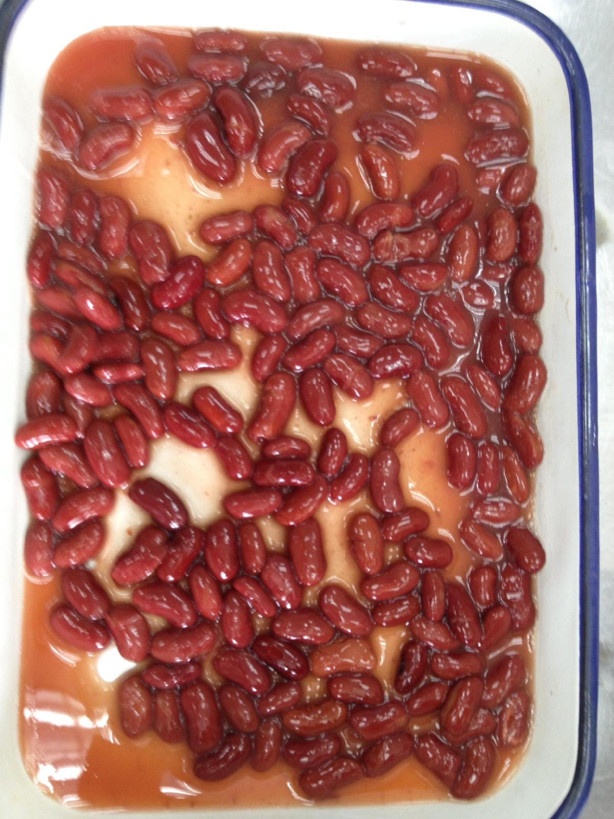 Canned Red Kidney Bean in Brine from factory directly