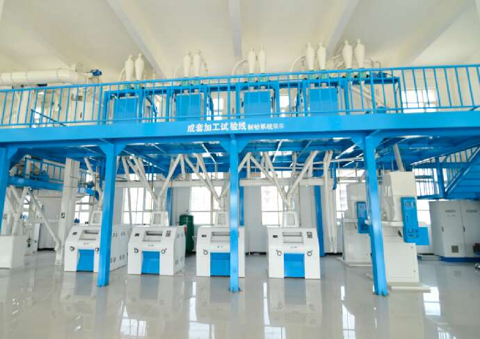 Maize Flour  Roller mill corn flour milling line maize processing plant