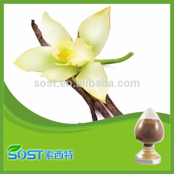 Alibaba 2014 hot sale vanilla flavour powder with competitive price