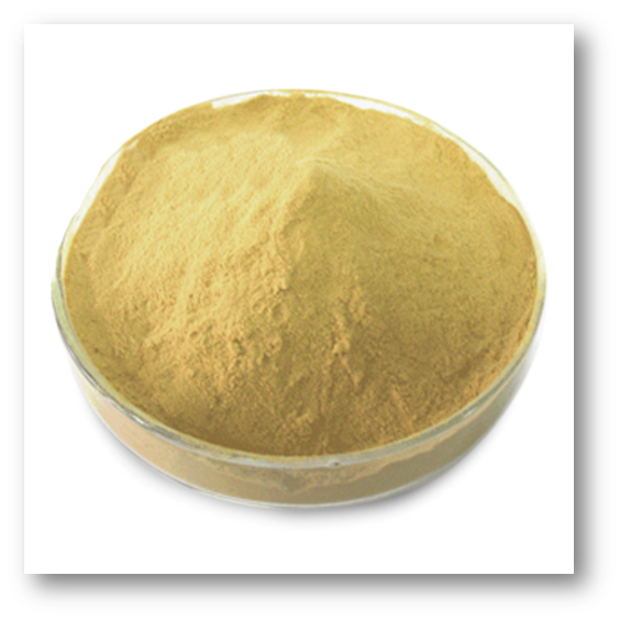 Yeast extract powder for food ingredients enhance flavour