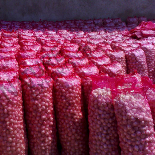New Crop Fresh Red Onions For Export