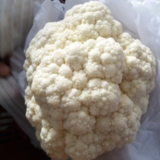 2019 new crop A grade fresh frozen cauliflower
