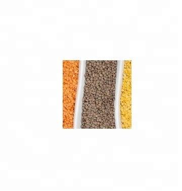 red split lentils,red split lentil and green split lenti,yellow split lentil