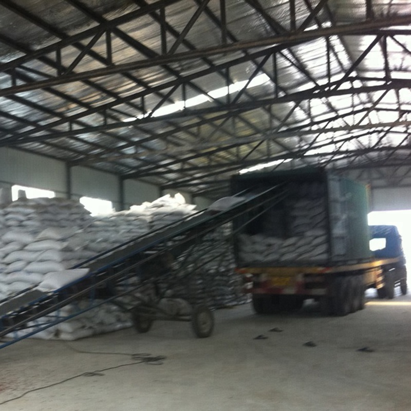 New crop Mung Bean to export for sale with good price