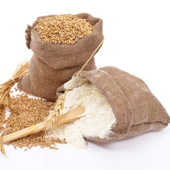 Best Quality Whole Wheat Flour Price Ukraine, Russia & Indian Origin