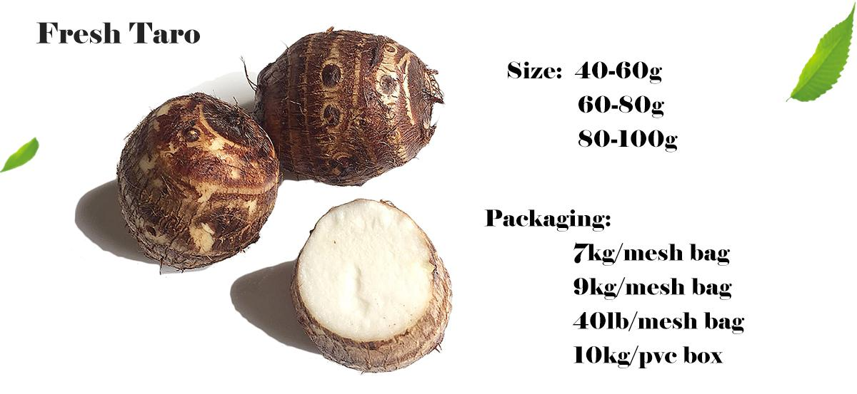 Chinese New Crop Natural Fresh Taro Eddo Export Sale