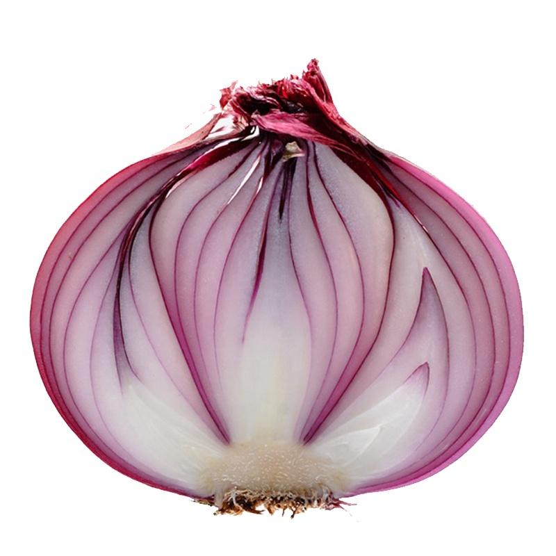 Common Plant Vegetables Chinese Fresh Red Onion 10Kg Mesh Bag