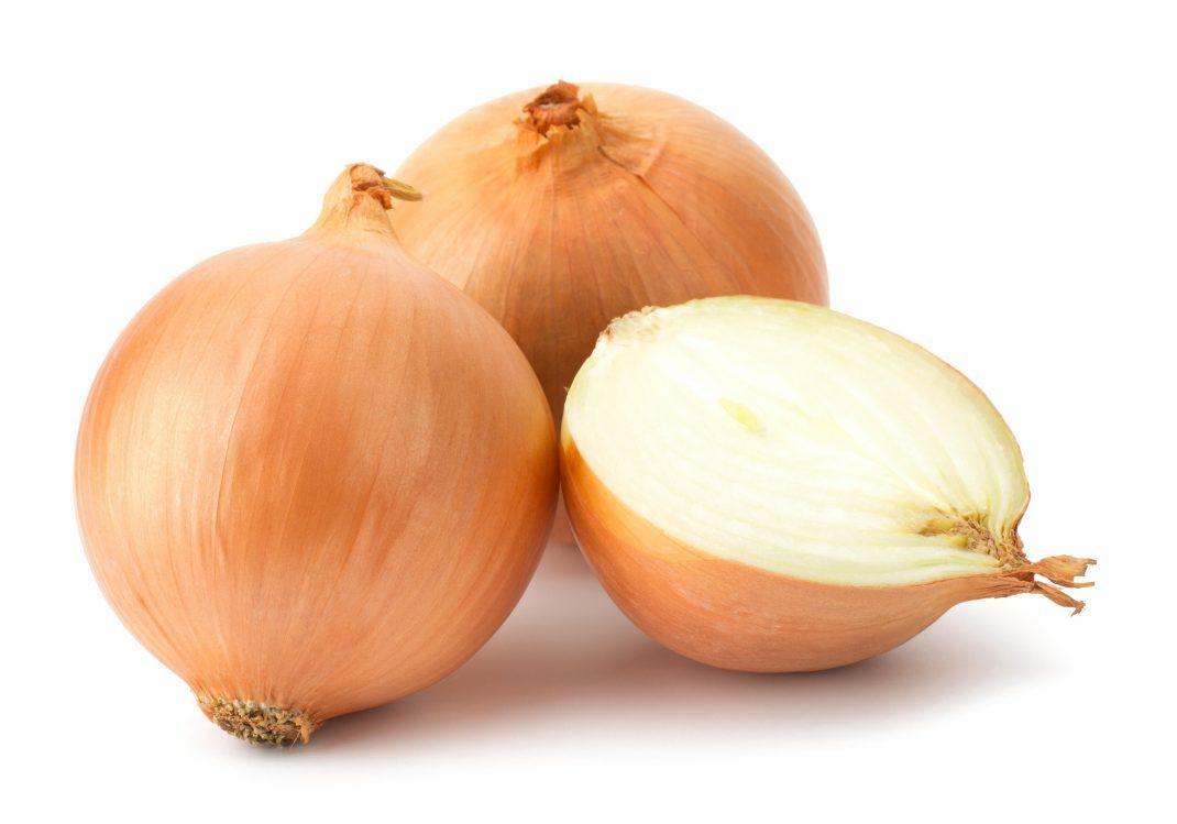 2019 Fresh Onion/Onions Price Ton New Crop