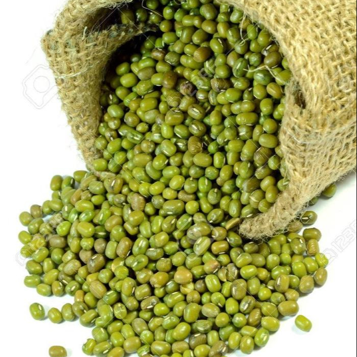 Wholesale Premium Agriculture Organic Dried Green Mung Bean from Thailand