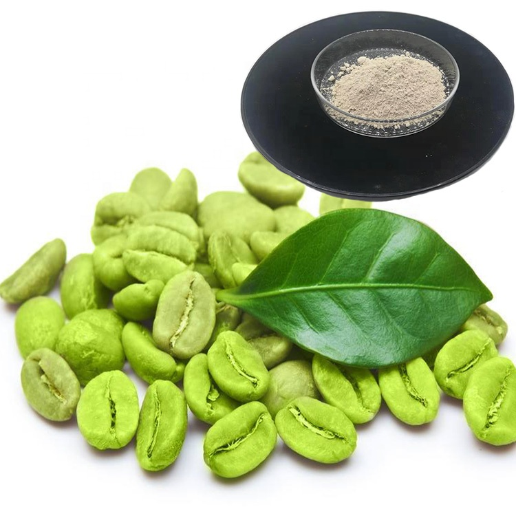 Weight Loss Green Coffee Bean Extract Chlorogenic Acid Green Coffee