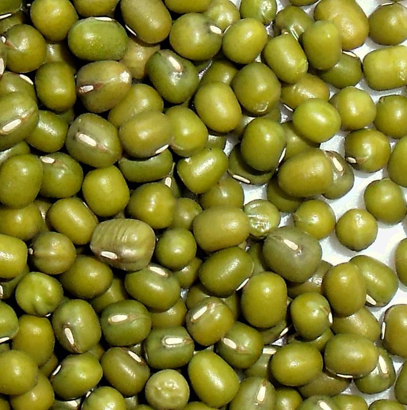 Types of prouting&food Green mung bean,Mung,Mung Bean