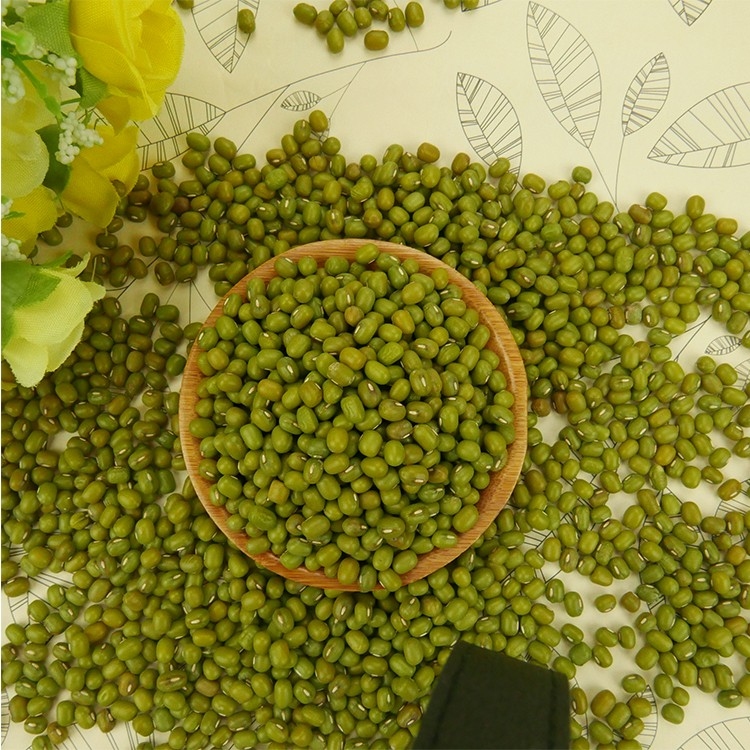 2019 new crop small green mung bean for sprouts,Chinese origin