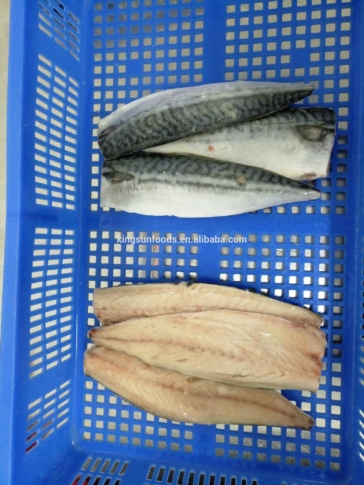High Quality Frozen norway saba atlantic mackerel fillet
