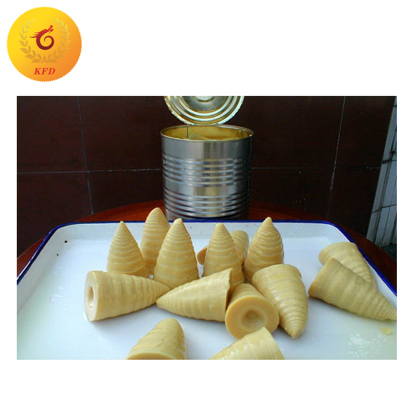 Canned Bamboo Shoot Whole