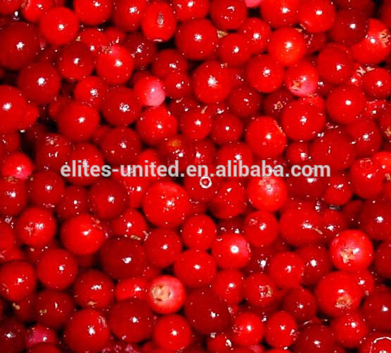 A grade IQF frozen fruit lingonberry