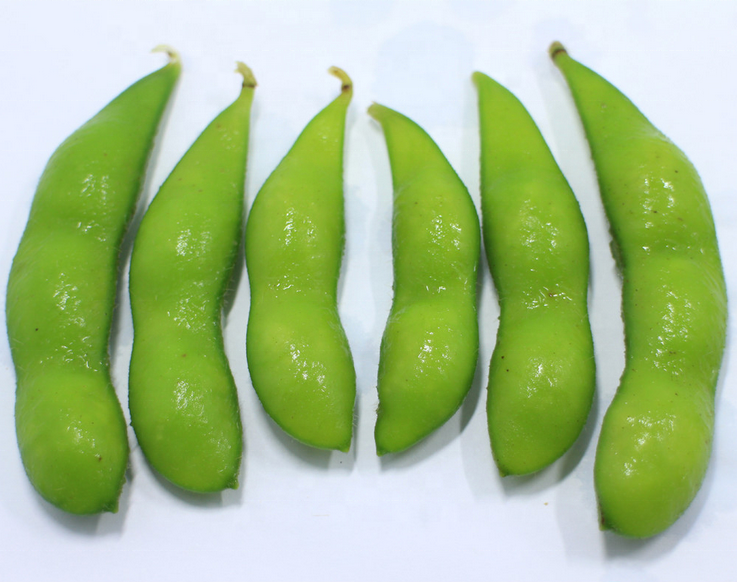 2020 New Crop  Frozen IQF Organic Green Edamame with pods frozen Soybeans peeled edamame beans kernel