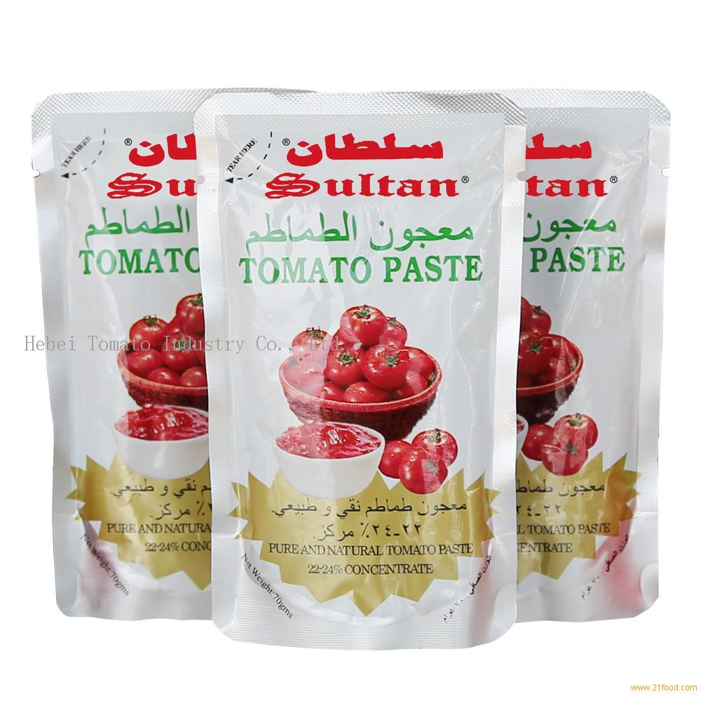 70g Standing Tomato Paste Best Price with Almudhish Quality