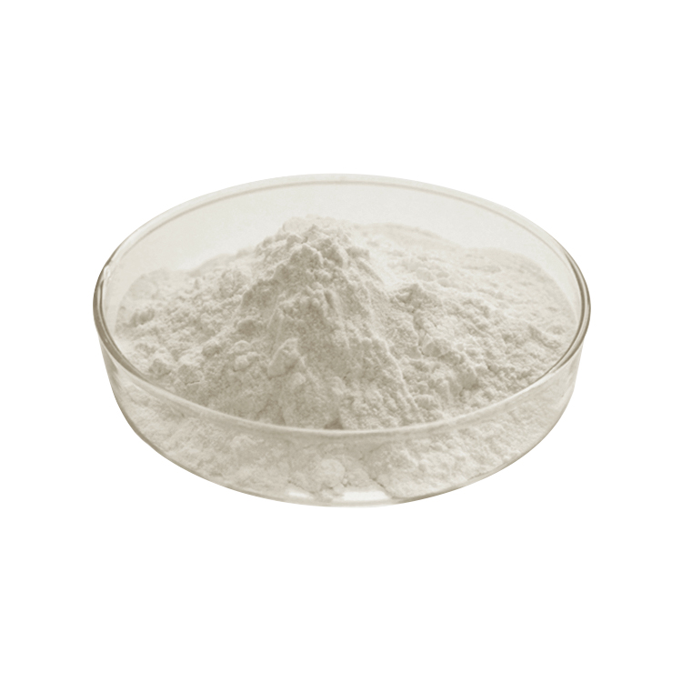 High Quality Natural Coconut Milk powder inexpensive with modern factory
