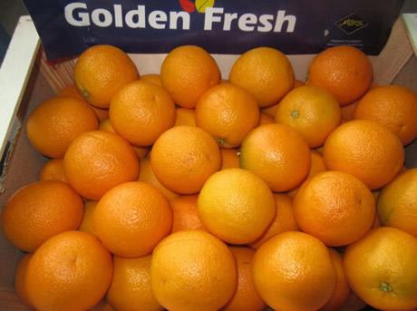 Navel Oranges from Egypt, fresh, Premium Quality for export.