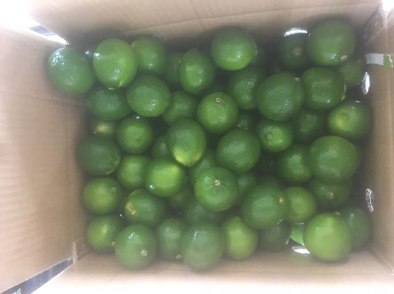 Green lemon/ Fresh lime/ fresh lemon seedless