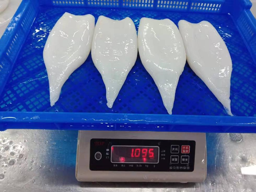 Best Quality Frozen Seafood Frozen Squid Tube Price For Export