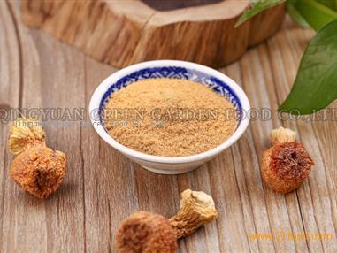 Agaricus Blazei Powder