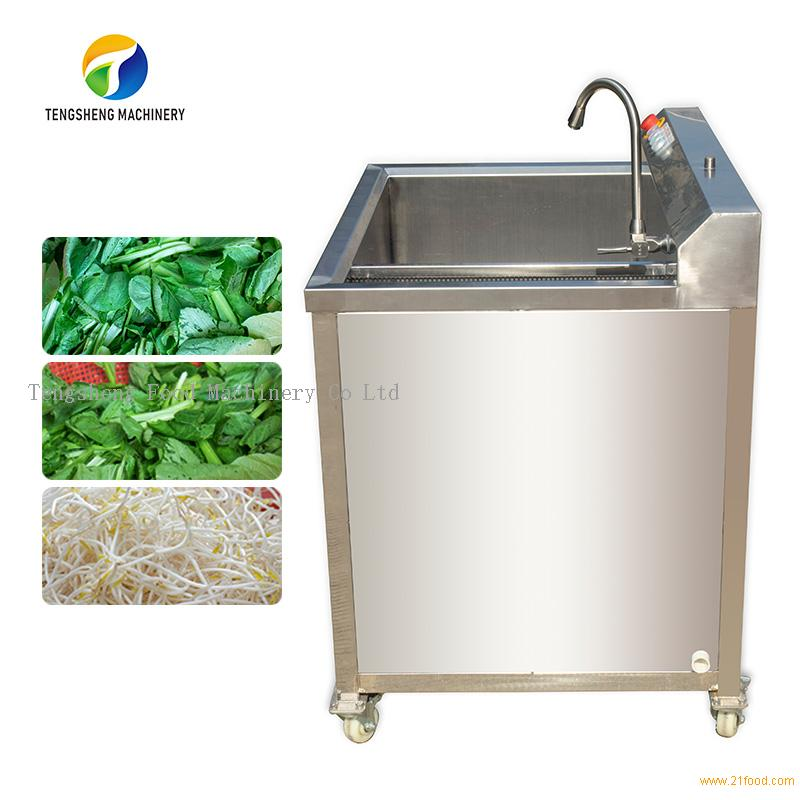 TS-AZ Small fruit and vegetable bubble disinfection washing machine