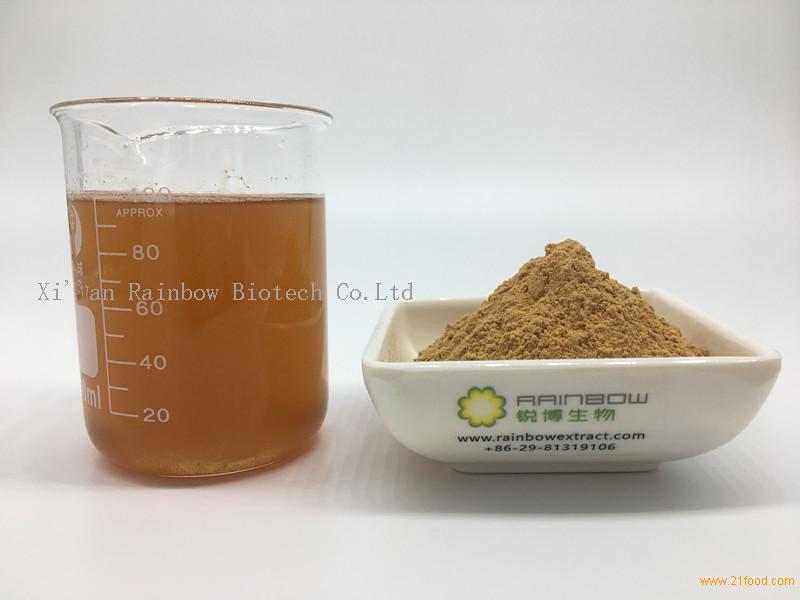 Triterpenoids 1% Reishi Mushroom Extract Powder