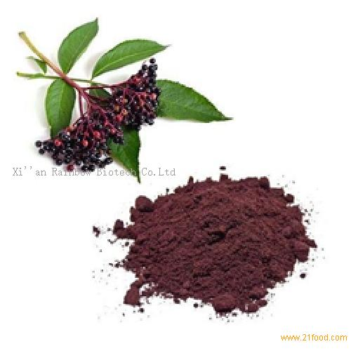 Black Elderberry Extract 5%Anthocyanidin powder