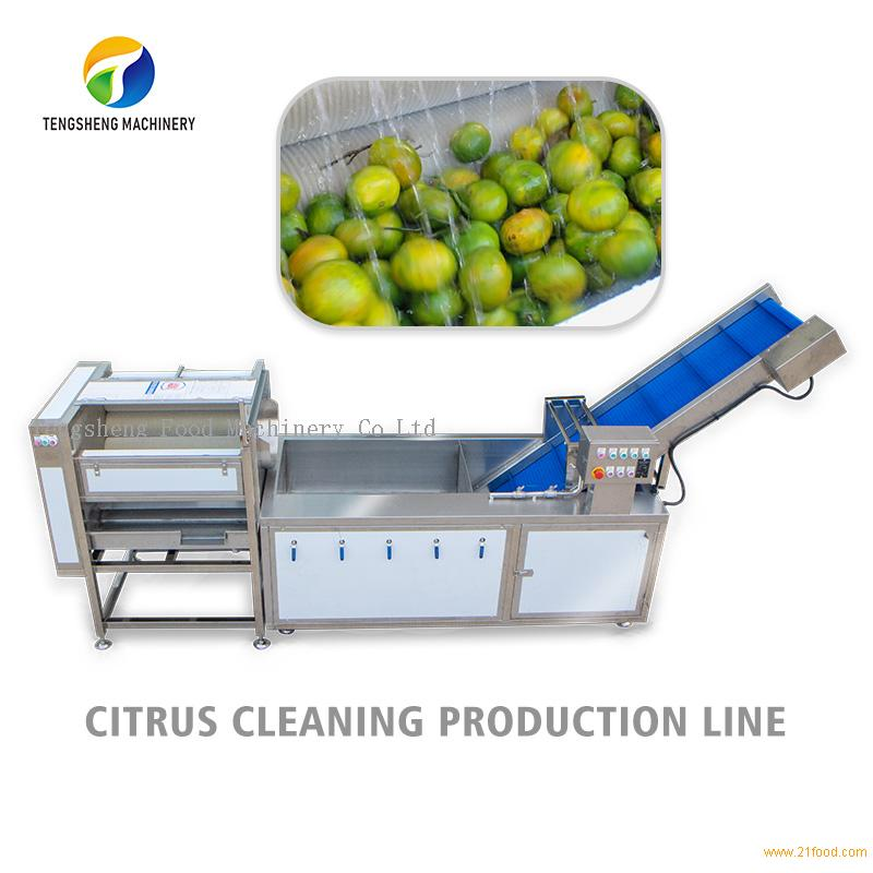 Citrus lemon tomato fruit and melon cleaning production line