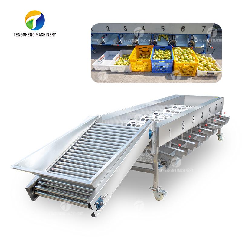 Stainless steel large separator fruit classifier food processor(TS-FS670)