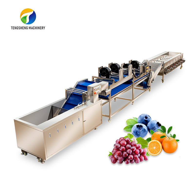 Industrial large-scale fruit cleaning, air drying and sorting machine