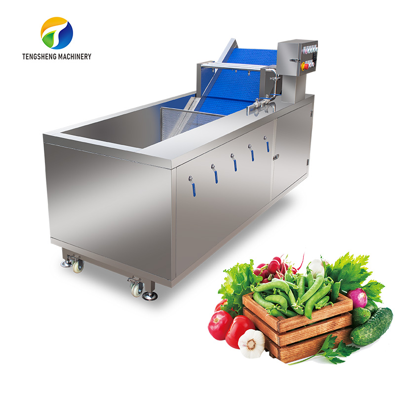 Large stainless steel vegetables and fruits bubble washing machine ozone sterilization(TS-X200)